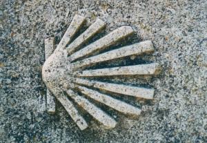 seashell_symbol