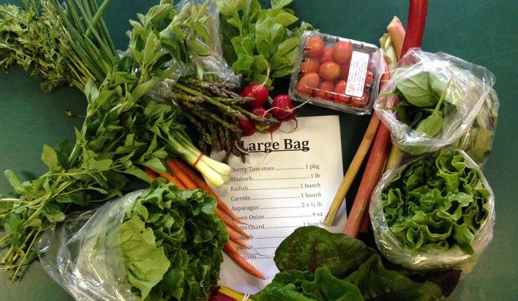 2014-06-25-large-bag