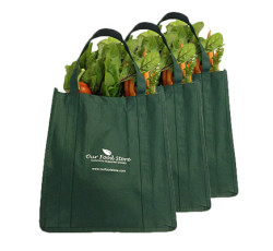 fresh-food-bag-subscript-01-250x230